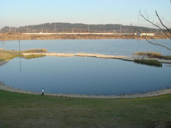 公司前的水库